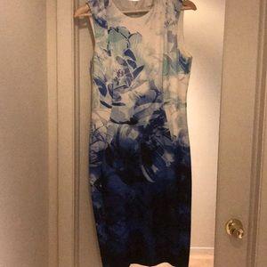 Calvin Klein White and Blue Dress